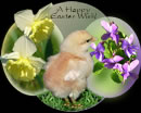 A Happy Easter Wish!